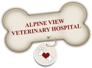 Alpine View Veterinary Hospital Home